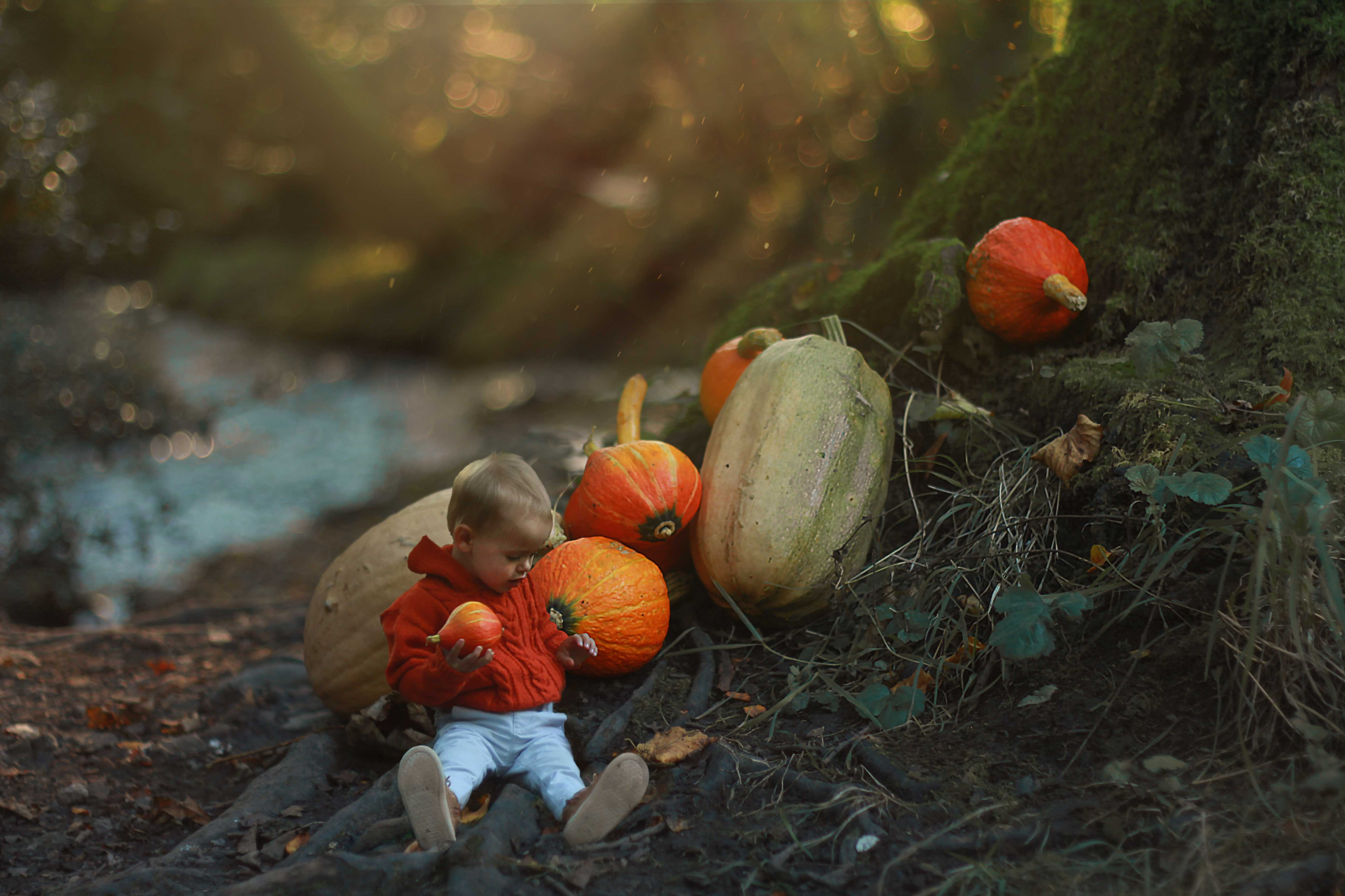 1ST PLACE WINNER - Amy Rothwell with her magical image of small squashes/pumpkins and a 'miniaturised' toddler.